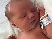 Domián Roller z Nové Role narodil 25. června