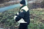 Labuť putovala z areálu krajské hygieny zpět k řece.