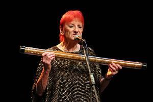 Jana Koubková zpívá pro denní centrum Žirafa.