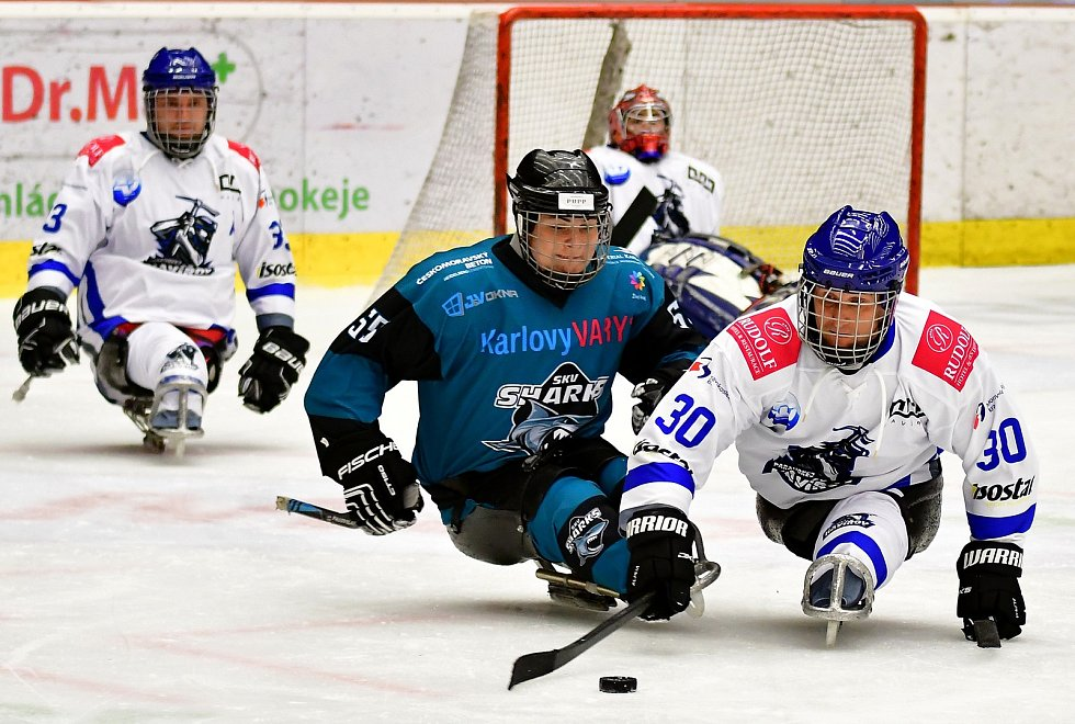 Dvě výhry během víkendu slavili v domácím prostředí para hokejisté SKV Sharks Karlovy Vary, kteří zdolali Havířov i Zlín.