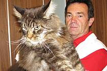 ŘADU LET řídil Jan Choulík odbor majetku karlovarského magistrátu. Ve volném čase se věnuje své velké vášni, chovu koček.