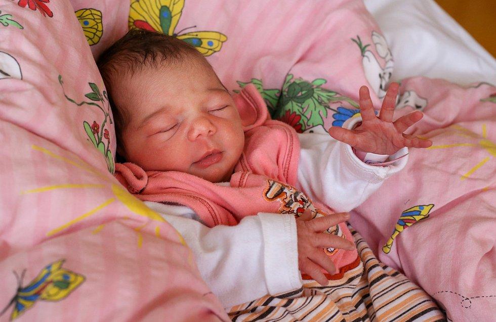 ELIŠKA VAŠÍČKOVÁ přišla na svět ve středu 20. listopadu v 8.23 hodin. Při narození vážila 2 830 gramů. Doma v Kopaninách u Aše se z malé Elišky radují sourozenci Ivanka a Jakub, maminka Ivana a tatínek Bohuslav.