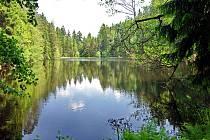 Bečovské lesní rybníky je název Evropsky významné lokality vyhlášené v roce 2004.