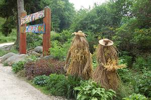 Je tomu už 14 let, co Jiří Šindelář začal s obnovou Bečovské botanické zahrady. Za tu dobu prošla ohromnou proměnou a stala se známou nejen v regionu, ale i v České republice.