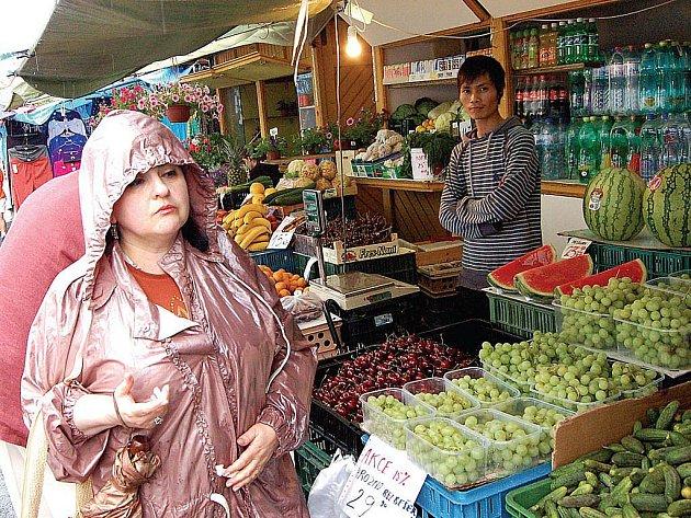 Nesouhlasí ani Vietnamci. Pod trestním oznámením na šéfy městské firmy KV City Centrum a jednatele společnosti Linas Trade Group jsou podepsaní i někteří vietnamští prodejci. (Ilustrační foto.)