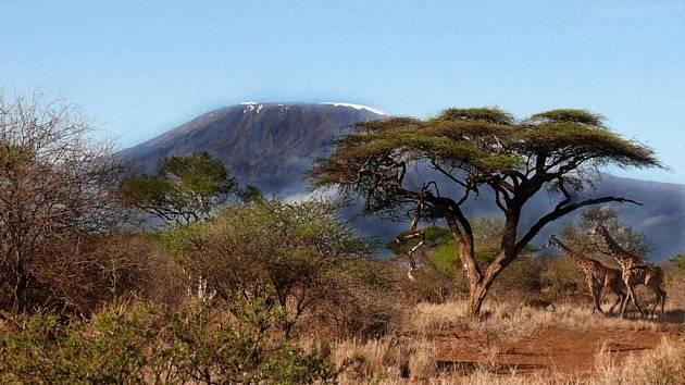 Kilimandžáro.