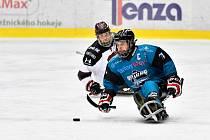 Karlovarští Sharks vyzvou v sobotu 14. prosince v Ostrově Studénku a v neděli 15. prosince Zlín.