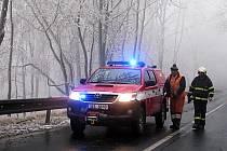 DO ODSTRAŇOVÁNÍ pod námrazou padlých stromů a větví se včera pustili také dobrovolní hasiči z Božího Daru.