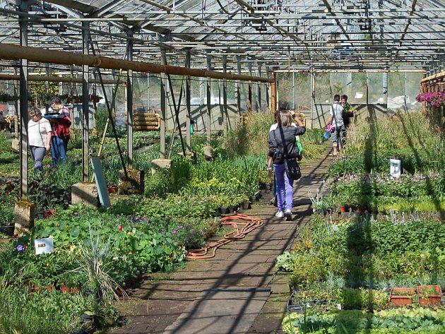 Ilustrační foto: Zahrada Teplá.