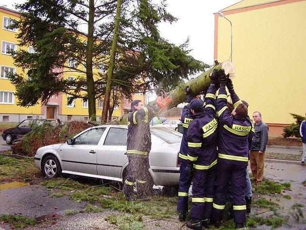 Hasiči rozřezávají padlý strom.