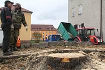 Jen pařez zbyl po zahájení rekonstrukce v ulici Sládkova, ta by měla být dokončena do konce listopadu.