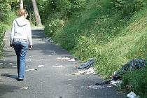 Vandal si popletl chodník se smetištěm.