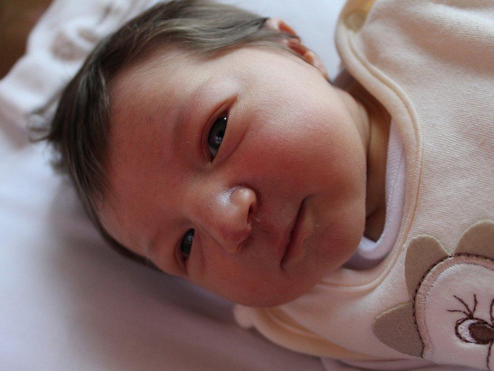 NIKOL KOROUSOVÁ z Horního Slavkova se narodila 9. 5. 2017