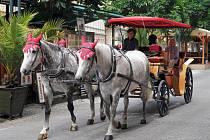 KOČÁROVÁ doprava patří k oblíbeným atrakcím v lázních.
