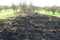 V lokalitě je provozováno ekologické zemědělství za státní a evropské dotace. Případ tak řeší České inspekci životního prostředí.