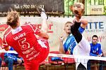 SK Liapor Witte Karlovy Vary dosáhl v nohejbalové extralize na třetí místo.