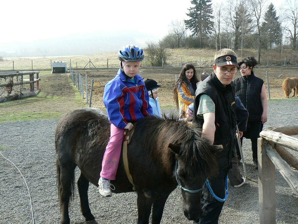Koně Hany Šafrové Uhlířové jsou k užitku i ostatním. Foto: Hipocentrum Pája