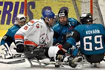 Hráči karlovarského SKV Sharks zvládli důležitý duel se SOHO Olomouckými Kohouty (ilustrační foto).