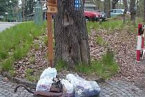 NEPOŘÁDKU JE PŘÍLIŠ. Mnoho návštěvníků lázeňských lesů si plete přírodu se smetištěm.