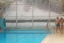 Jedním z největších lákadel Potůčků je bazén, který patří obci. Potůčky však nabízí i celou řadu dalších sportovních a rekreačních aktivit.