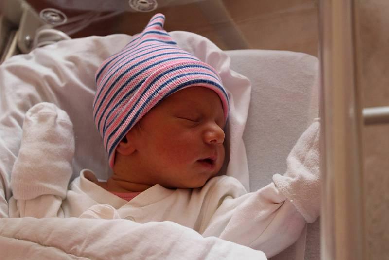 Dvojčata Josef a Anna Komárkovi se narodila 9. července 2021 ve Fakultní nemocnici v Plzni na Lochotíně mamince Martině a tatínkovi Josefovi z Tachova. Josífek se narodil v 11:47 hodin, vážil 2700 g a měřil 47 cm, Anička o minutu později, vážila 3100 g a