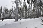 Situace v lesích je kvůli množství sněhu nebezpečná a nedoporučuje se do nich v některých lokalitách vstupovat.