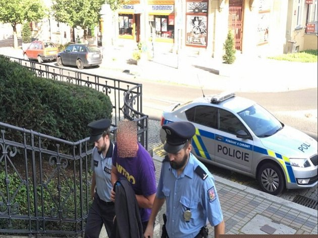 Policisté dopadli muže, který se pokusil o znásilnění.