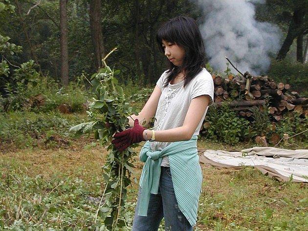 Při obnově unikátní botanické zahrady v Bečově pomáhají už několik let zahraniční studenti.
