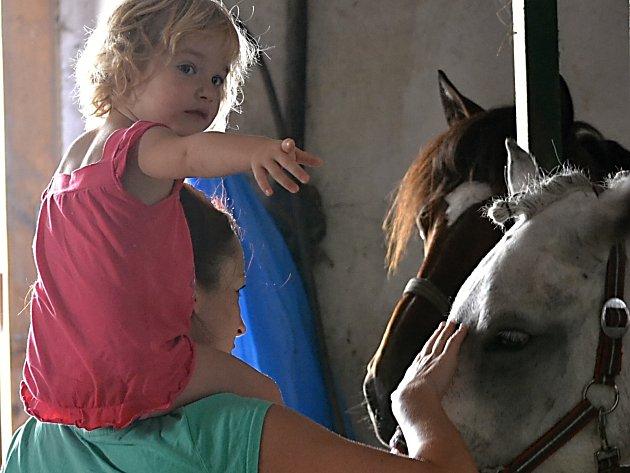 Letní skokové dny přilákaly malé i velké milovníky koní