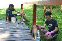 Dobrovolníci na archivním snímku pomáhají ve Slavkovském les