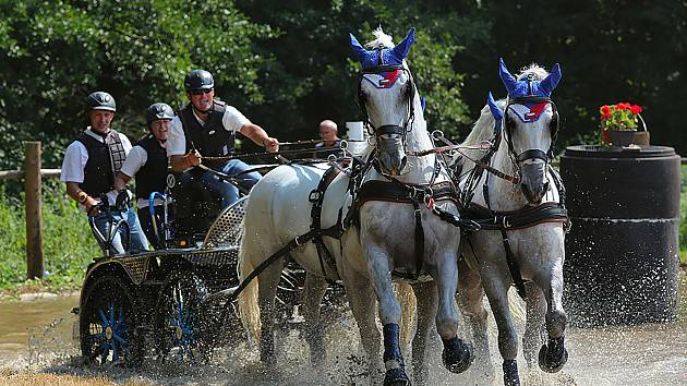 Světový pohár spřežení opanuje po tři dny Nebanice. Milovníci koní si tak přijdou na své.