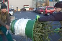 Už několik let prodávají slovenští brigádníci Janko a Lukáš stromky v Karlových Varech.