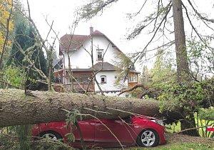 Do Česka dorazil silný vítr: láme stromy, komplikuje dopravu i převrací auta