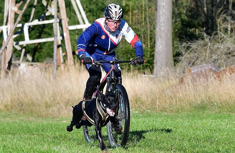 Abertamský sprint přilákal na start závodu devadesátku mašérů, kteří se představili v patnácti kategoriích.