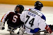 V šestém kole sledgehokejové ligy pokořil úřadující mistr sledgehokejové lihy SKV Sharks (v bílomodrém) na ostrovském zimním stadionu vícemitra ligy Spartu Praha (v rudém) v poměru 5:1