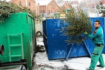 I KDYŽ mnozí lidé uschlý stromeček odloží k popelnicím, někteří z nich je vyhazují i do sběrného dvora, kde se kontejnery postupně plní.