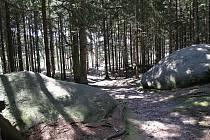 Nedaleko Chyše se nachází chráněné území Horní Střela.