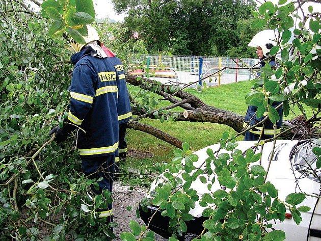 Nárazový vítr a silný déšť vyvracely stromy na Sokolovsku. Hasiči vyjeli v kraji hned ke dvanácti případům. Škody jsou minimální.