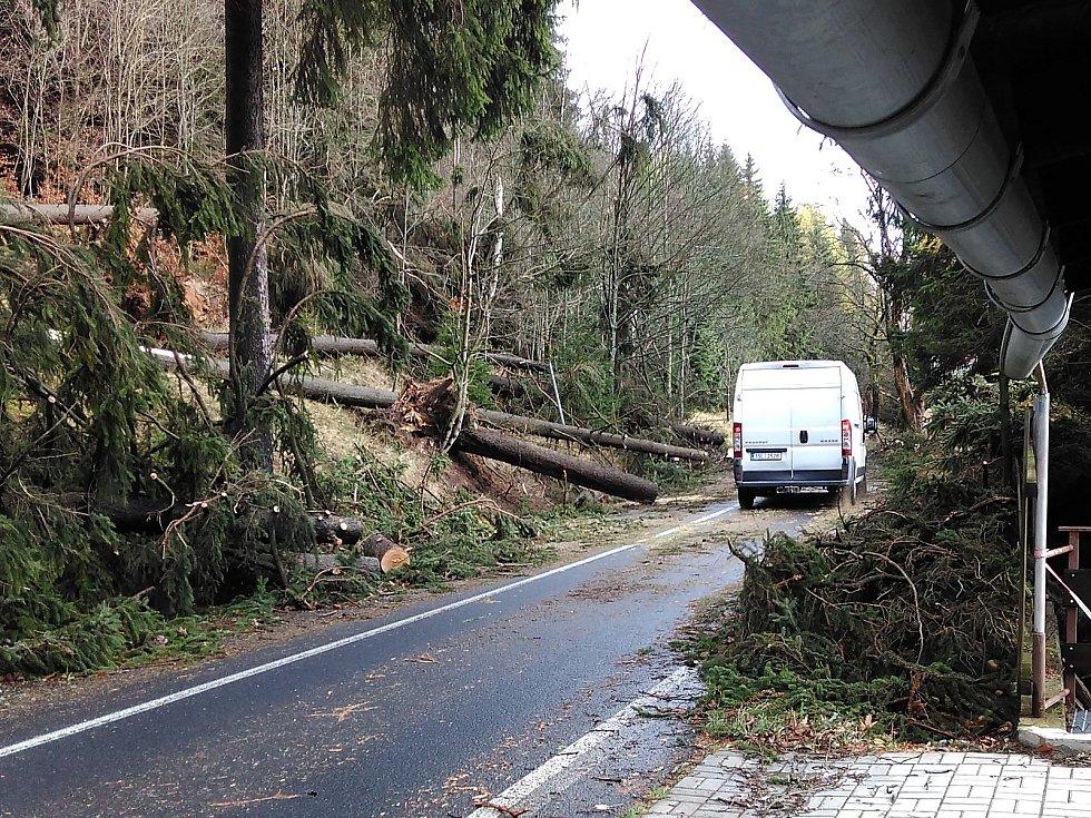 Pernink v Krušných horách dostal od vichřice pořádnou ránu. Mnoho domů přišlo o střechy a vjezd do obce se podařilo hasičům z části otevřít až v dopoledních hodinách. Obec je stále bez elektřiny, a protože padající stromy strhly elektrické vedení a na mno