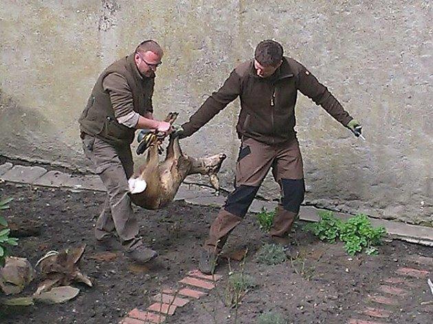 Záchranná akce v karlovarském muzeu.