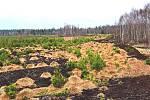Perninskému rašeliništi se vrátí jeho původní vlastnosti.