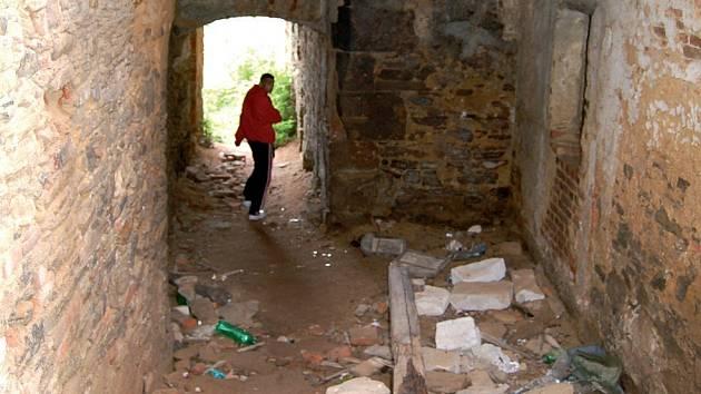 Vejít do areálu toužimského zámku v současné době vyžaduje odvahu.