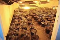 Za prodej drog hrozí pachateli vězení.