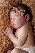 Elizabeth Sattler ze Smolných Pecí se narodila 4. 12. 2012