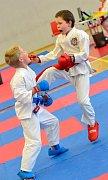 1. Lázeňský pohár v karate v režii libereckého oddílu SK Karate Shotokan.