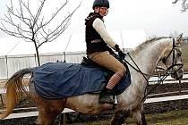 Chtějí se rozšiřovat. Daniela Donthová provozuje v Rosnicích stáj pro koně. Nyní požádala vedení města o pronájem pozemků, na kterých chce provozovat pastviny. (Ilustrační foto.)