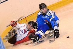 Sledge hokej: SKV Sharks K. Vary - SHK Mustangové AUTO IN 3:1.