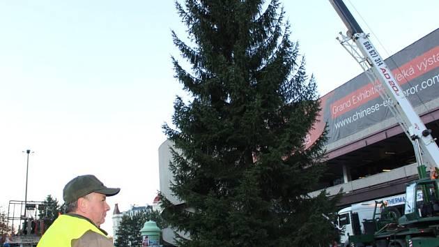 Usazování vánočního stromu před hotelem Thermal.