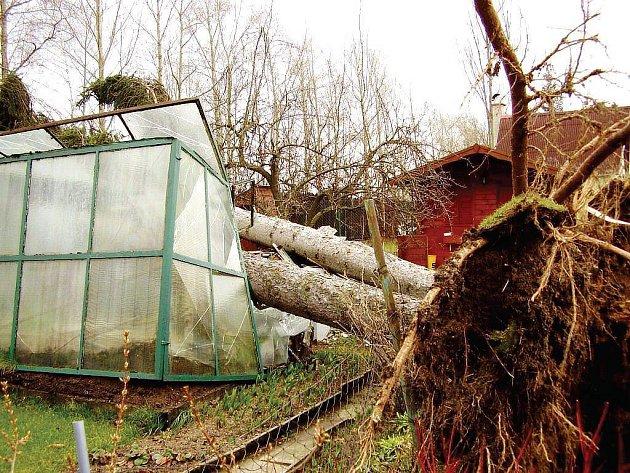 NEMILOSRDNÝ ŽIVEL. Řádění vichřice Emma v Nové Roli na Karlovarsku padly za oběť střechy domů, stromy se lámaly a drtily vše, na co dopadly.