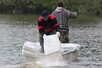 Rybáři na Karlovarsku vápní rybníky. V sobotu dopoledne rozsypali osm tun vápna na hladinu Velkého rybníka u Hroznětína na Karlovarsku.